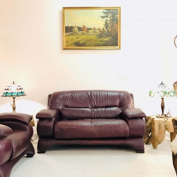 Кожен диван + фотьойл